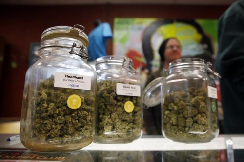 Jars of marijuana sit on a counter during a sale at the Denver Kush Club pot shop in north Denver.(David Zalubowski, Associated Press file)
