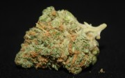 sage-n-sour-marijuana-review-the-cannabist
