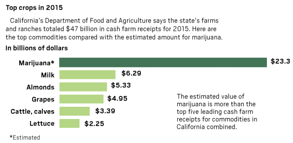 Chart of top crops in California